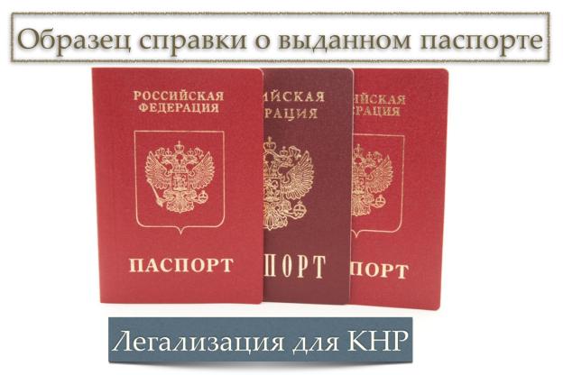 справка о выданном паспорте для кнр