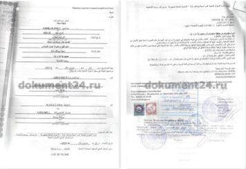 свидетельство о рождении для Египта