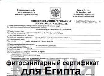 Фитосанитарный сертификат для Египта