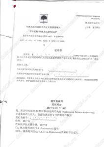 Справка с места работы для Китая перевод